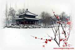 The Old Summer Palace in Winter (Meiguoxing) Tags: china old summer art museum de beijing palace palais vero  poly alter ming yuan peking attraction attractions palcio ancien antigo  pkin oldsummerpalace  yuanmingyuan pechino  sommerpalast     dt