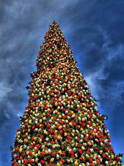 Fashion Island's Christmas Tree (Mine Beyaz) Tags: california christmas tree christmastree fashionisland newportbeach explore mavi soe mywinners abigfave goldstaraward minebeyaz