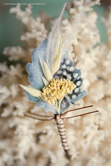 Feather Boutonier