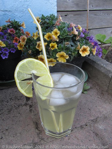 Holunderblüten-Gin-Fizz