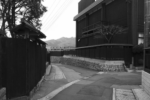 murakami walker