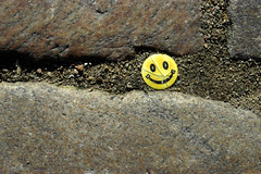 even when life is hard - smile (crosslens) Tags: smile cobblestone smiley find