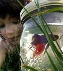 I can't wait (olivia bee) Tags: fish selfportrait water girl field grass child edward sp jar teenager port3 obee oliviabee