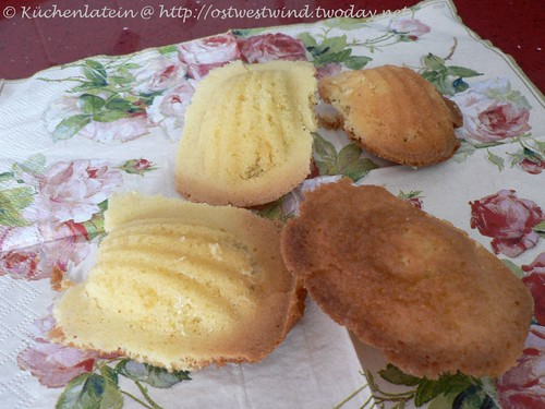 Madeleines - Tuesdays with Dorie 004