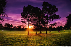 Parque Marinha do Brasil (Omar Junior) Tags: parque sunset pordosol sky cloud fish color tree sol colors brasil clouds digital cores geotagged pentax d portoalegre cu porto junior nuvens praa manual arvore alegre omar ist poa rs cor ceu riograndedosul por sul pentaxistd marinha blending rgs 17mm parquemarinhadobrasil 1728 digitalblending fisheeye geo:lat=30059159 geo:lon=51233518
