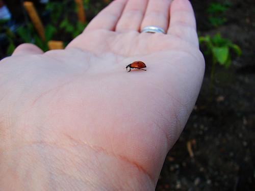 go, little guy!