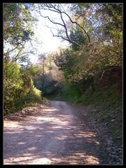 CAMINO AL CRISTO DE LA CALDERA - SALTA - ARGENTINA (Angel David Ramayo) Tags: argentina de la al camino caldera cristo salta