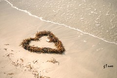 ( Maitha  Bint K) Tags: love beach sand nikon heart uae g1 d3