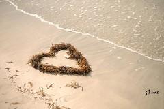 ( Maitha  Bint K) Tags: love beach sand nikon heart uae g1 d3