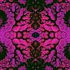 Garden Fossils (Song_sing) Tags: challenge kaleidospheres kaleifractals