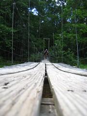 Douthat swinging bridge
