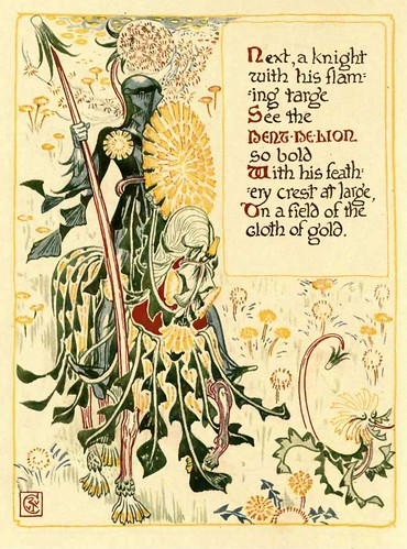 02-A Floral Fantasy 2 -1899