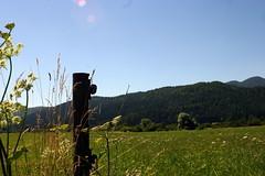 Dane (roelfina) Tags: vakantie dane 2008 slovenië
