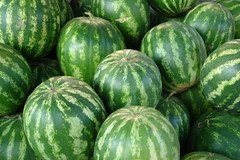 Watermelons (CharlesFred) Tags: green europa europe european watermelon prizren kosova kosovo balkan eropa avrupa evropa balcani eurooppa balcanica  southeasteurope  ballkan   balkanhalbinsel  melonprizren   yurub  ballkanik ovejebalkan thisisthebalkans achainofwoodedmountains haemus