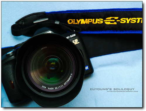 Olympus_E520_21 (by euyoung)