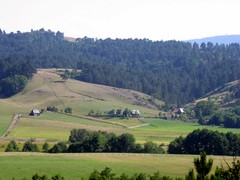 Tara - Serbia (Goran Anii) Tags: tara serbia zlatibor kremna