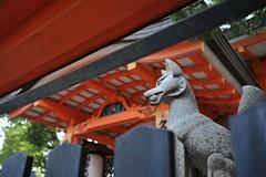 Kyoto 2008 - 三十三間堂(12)