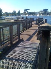 arboretum boardwalk