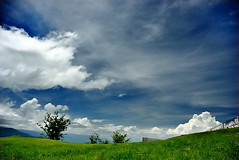 (bibi.barbie) Tags: blue sky green nature clouds heaven natur himmel wolken explore    nikond80 theperfectphotographer bibibarbie