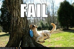 Funny Dog Pictures - Frisbee Dog Hits Tree