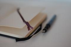 moleskine & favourite pen