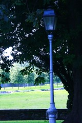 Lamp Post in Context at IMMA (rosewoodoil) Tags: blue ireland dublin garden lamppost digitalrebel imma bluetoning dublingarden anouilh photographedublin bbgardensie