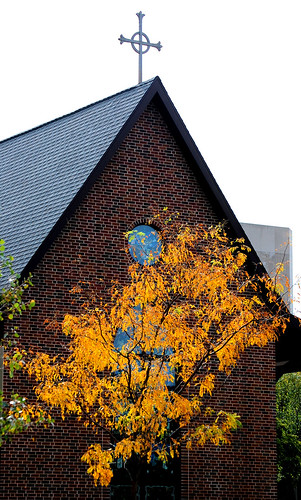 Church & Tree by Mayo Clinic Rochester MN