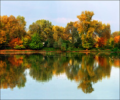 Autumn riches (Katarina 2353) Tags: desktop wood blue autumn trees sky lake reflection green film nature water beautiful yellow forest landscape photography nikon europe flickr image earth serbia paisaje cielo wallpapers belgrade paysage priroda beograd srbija adaciganlija tjkp pejza katarinastefanovic lakeadaciganlija katarina2353