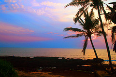 Anjuna Beach (garyclicks) Tags: travel light sunset wallpaper beach nature water beautiful night poster evening colorful goa scenic palmtrees beautifulsunset beautifulevening indianbeach colorfulclouds photoaward sunsetwallpaper goanheritage thegoanheritageindia wallpapertravel
