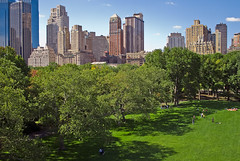 Shady South Edge of Sheep Meadow (scottdunn) Tags: nyc kite newyork skyscraper photography centralpark aerial gothamist kap aerialphotography kiteaerialphotography urbanskyline sheepmeadow scottdunn fotografiaareacompipa dsc0115 photoparcerfvolant fesseldrachenluftbildfotografie
