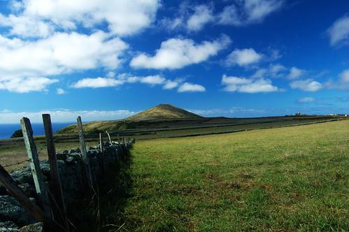 Almagreira-Santa Maria-Açores