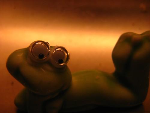 Underwater frog