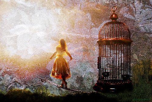 ~  free  ~ by AlicePopkorn, on Flickr