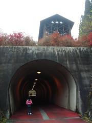 森林館とトンネル 檜原都民の森