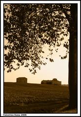 Tuscany countryside (^^^Valentina Zama^^^) Tags: foglie countryside casa nikon campagna cielo tuscany toscana terra albero autunno cortona arezzo casale seppia abbandonato sfumature camucia d80