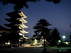 Nara Pagoda (Steve-kun) Tags: japan temple jp nara todaiji flickrcom  flickrjp flickrflickr jpcom