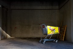 big savings start here (xgray) Tags: color yellow digital canon austin shopping eos university texas basket stadium trolley universityoftexas 5d cart heb canoneos5d royalmemorialstadium ef24105mmf4lisusm uploadx ofabandonedurbanbeauty postedtophotographieonlj postedtophotographersonlj epiceditsselection