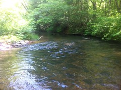 Jones Creek