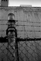 Untitled (Hunchentoot) Tags: leica nyc newyorkcity blackandwhite bw usa newyork film wall analog america fence fuji manhattan wand rangefinder lookingup summicron 400 barbedwire sw neopan neopan400 agfa rodinal amerika zaun barbwire leicam7 2010 stacheldraht m7 fujineopan400 agfarodinal schwarzweis fujineopan weitz kleinbild 35mmsummicronm messucher ediweitz bwfp edmundweitz
