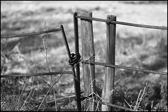 do not cross (vcrimson) Tags: park old england bw fence estate rusty wollaton wollatonhall