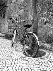 Bicycle (RiCArdO JorGe FidALGo) Tags: portugal bicycle sony bicicleta luso dsch2 mywinners fidalgo72 ilustrarportugal ricardofidalgo ricardofidalgoakafidalgo72