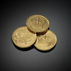 Pure-Gold-Coins