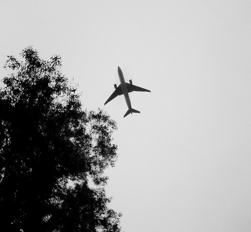 Under Flight Path