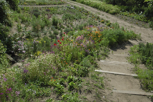 秘密の花園 2