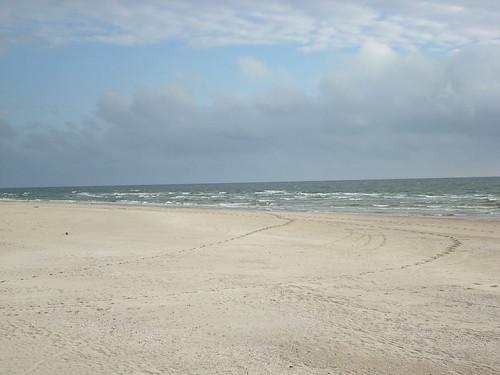 Smiltynė 2008 06 29