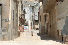 Little Man walks Alone (hazy jenius) Tags: world poverty trip travel boy camp baby kid globe war tour child palestine westbank nablus refugee islam middleeast documentary social arab cannon terror volunteer ghetto geographic slum askar occupation photjournalism nakbe bablus