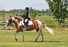 IMG_6780 (Ingrid A.-J.) Tags: reiter pferde reiten nordhackstedt sommerfest2008 rsgsderhof