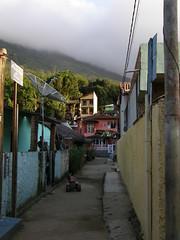 P6103442 (Kr.) Tags: brazilia illagrande