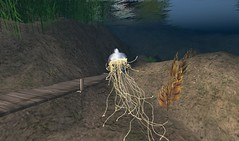 jellyfish (illuminator999) Tags: life art landscapes avatar linden sl creation second build windlight illuminator dingson