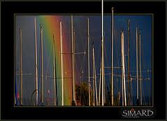 Arc-en-ciel... ( P-A) Tags: rainbow marin voile magnifique mats arcenciel grandiose imposant ferique rgates digifoto majestueux quebecphoto grement troublant plaisanciers nikond300 lavidaenfotografia photoquebec lysdor pierreandrsimard clubdevoilegranderivire